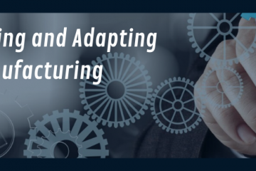 Investing and Adapting in Manufacturing